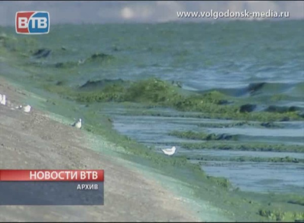 Волгодонск вновь будет обезвожен