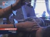 Жительница Волгодонска зарезала своего сожителя