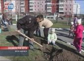 Рябиновая аллея в Волгодонске