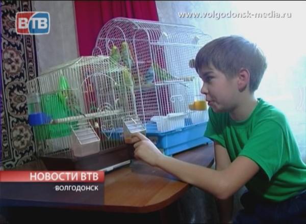 Юный орнитолог