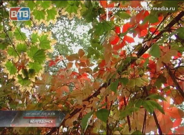 Осень показала свой характер