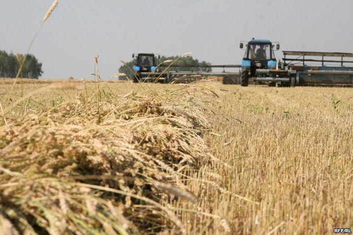 Новая линия глубокой переработки пшеницы появилась в Тульской области