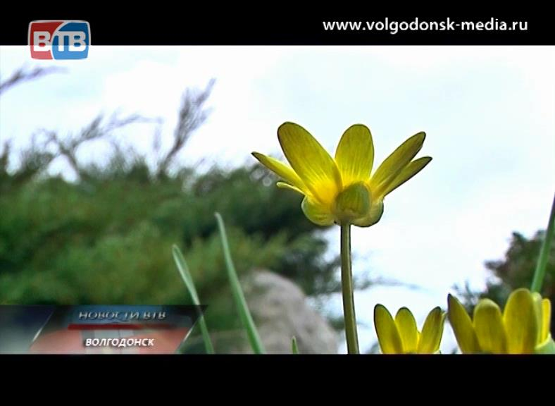Погода в солигорске на выходные http
