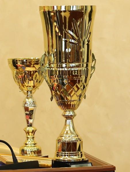 Волгодонск признан лучшим по развитию физкультуры испорта