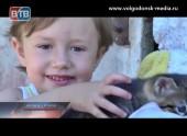 Девятая благотворительная акция Телекомпании ВТВ «Улыбка ребенка» подошла к своему завершению