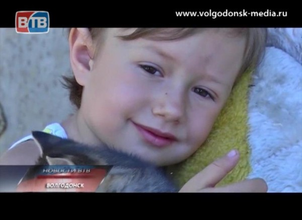 «Улыбка ребенка» в семье Шевченко
