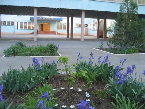 Лучшие школьные дворы у Центра образования и лицея №11