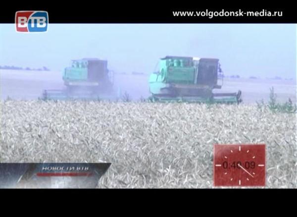ВРостовской области, засуха уничтожила150 тысяч гектар сельхозкультур