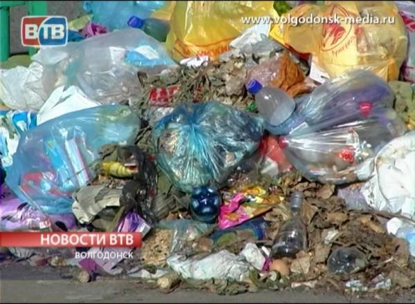 Правительство Ростовской области выступило синициативой ввести социальную норму намусор