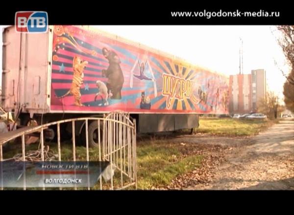 Сгастролями вгород приехал цирк Шапито изСеверной столицы
