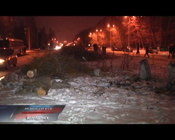 Варварство или плановая работа? Жители микрорайона В-16 возмущены спилом деревьев