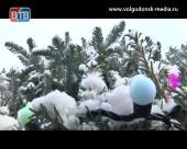 В Волгодонске выберут лучшую новогоднюю елку