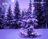 Световые гирлянды подключат 25 декабря