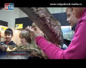 Московскую выставку экзотических животных и тропических бабочек посетили воспитанники детского приюта «Аистенок»