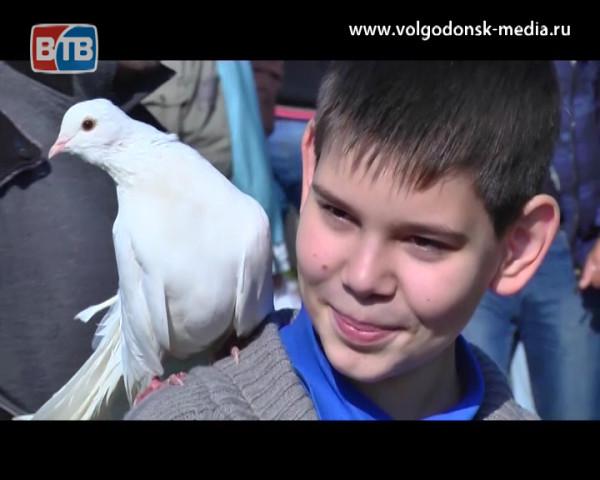 В Волгодонске во второй раз пройдет выставка голубей и летных птиц