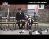 В Волгодонске проживают чуть более 170 тысяч людей