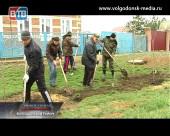 Более 850 лип высадили жители Волгодонского района в рамках Дня Древонасаждения на Дону