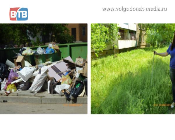 За не скошенную траву и несанкционированные свалки виновных привлекут к ответу