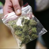 Волгодонец пытался убежать от полиции с марихуаной в кармане