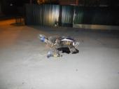 В воскресенье в ДТП пострадали водитель и несовершеннолетний пассажир скутера
