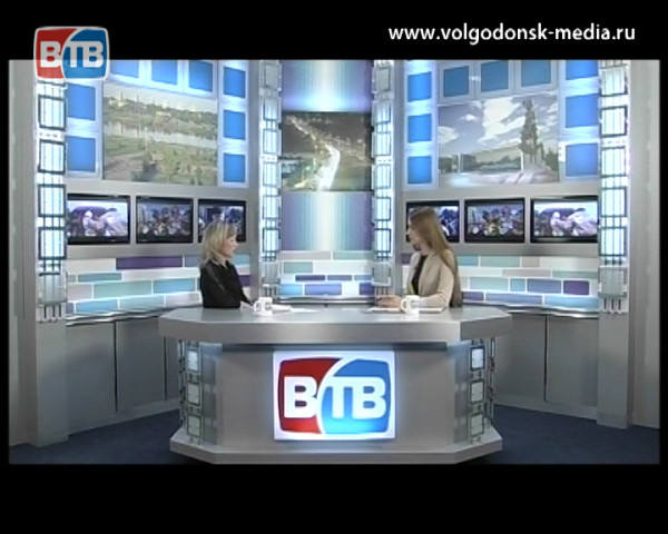В Волгодонске безжалостно убита бездомная собака