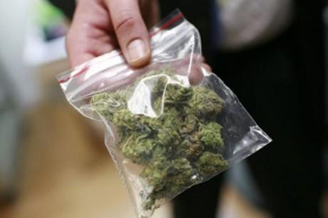 В Волгодонском районе задержан предполагаемый торговец марихуаной