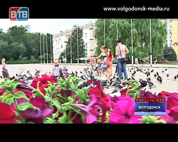Волгодонск. Летопись в лицах. Специалисты по благоустройству