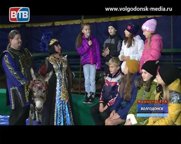 В эти выходные в «Советском цирке» будут праздновать день рождения ослика