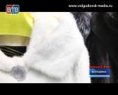 Торговый дом «Куница» предлагает норковые шубы по оптовым ценам