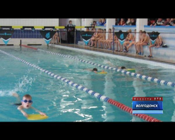 В бассейне «Дельфин» юные пловцы соревновались в плавании кролем без помощи рук