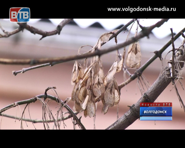 В Волгодонске резко ухудшится погода