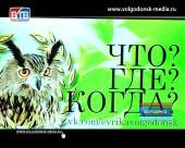 Впервые в истории игр «Что? Где? Когда?» в Волгодонске организаторы не смогли определить команду победительницу