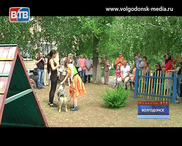 Фонд поддержки семьи и детства имени Николая Бурдюгова отметил свой 11 день рождения