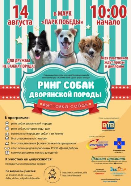 В Волгодонске состоится выставка беспородных собак
