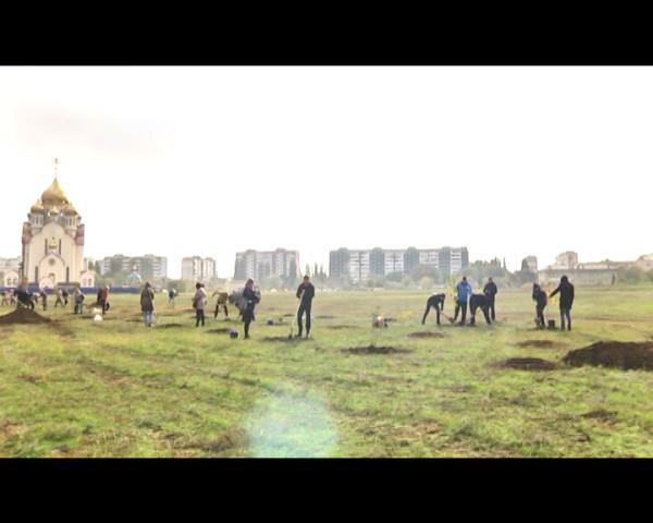 Единый день древонасаждение принес городу 1,5 тысячи деревьев