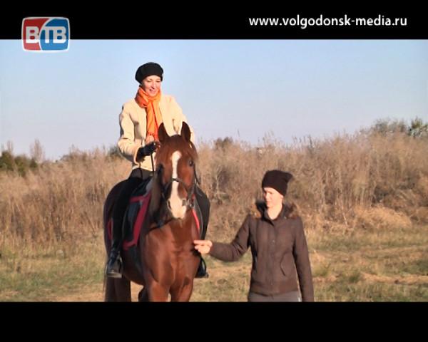 Леди совершенство приобщились к конному спорту