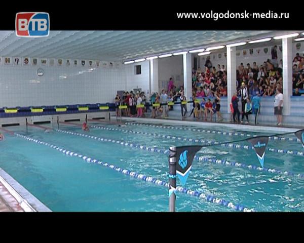 Кубок Ростовской области по плаванию в бассейне «Дельфин» завершился