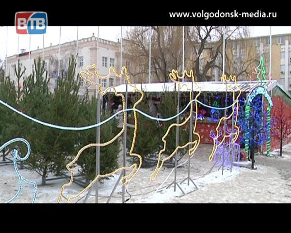 Сколько стоит новогодняя лесная красавица в Волгодонске?