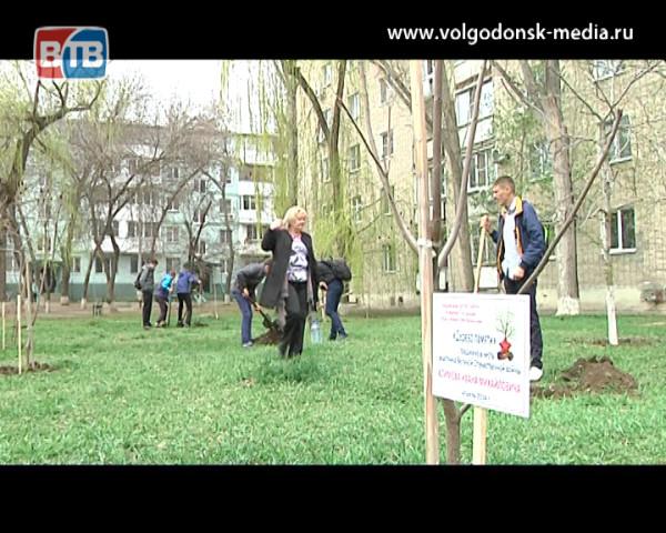 Городскую патриотическую акцию «Дерево памяти» поддержали еще два микрорайона