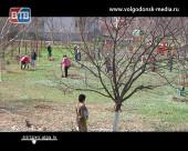 Телекомпания ВТВ и компания «Флора-сервис» вновь провели экосубботник в детской поликлинике №2