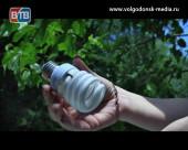 Волгодонск — чистый город! В Старосоленом состоялась акция по приему ртутьсодержащих отходов