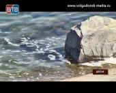 Осторожно! В водах Цимлянского водохранилища найдены колифаги!