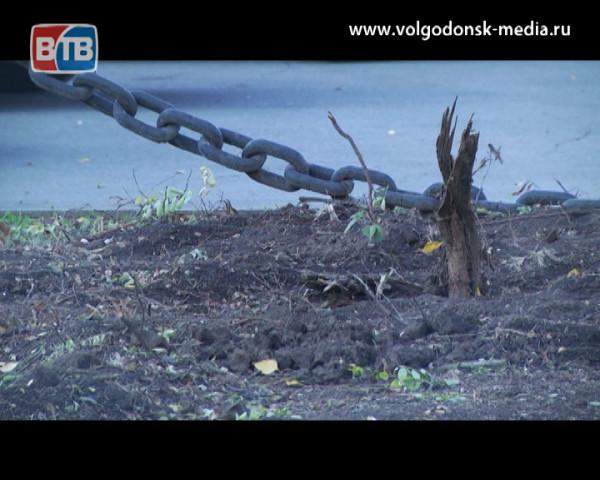 Заболевшие деревья вырублены, здоровые пересажены. У здания Администрации в рамках года экологии проходит реконструкция сквера