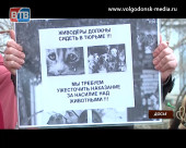 Волгодонского живодера осудили