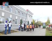 13 молодых голубых елей посадили возле Администрации Волгодонска