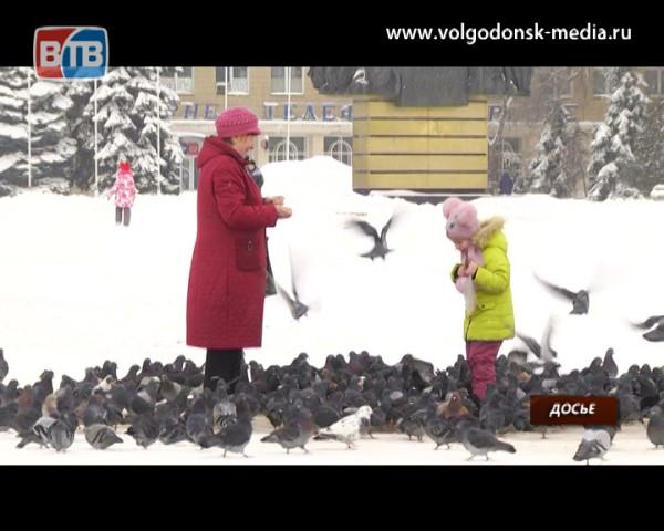 Жителей Волгодонска ждут дополнительные выходные