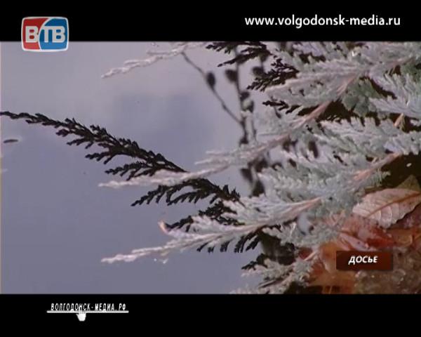 В Волгодонск на праздничные выходные весна не придет