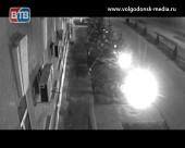 Из аллеи туй, высаженных перед администрацией Волгодонска, ночью украли молодое дерево