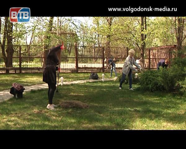 Коллектив Телекомпании ВТВ присоединился к месячнику чистоты выйдя на субботник