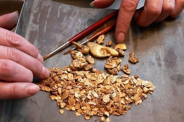 На поиски золота в Ростовской области выделят 200 млн рублей